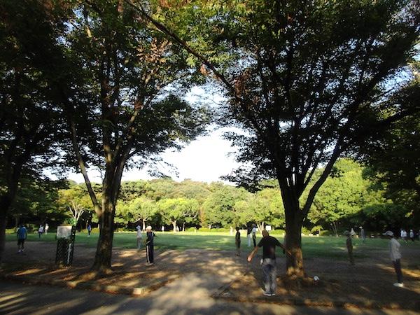 浜松城内の公園でラジオ体操をする人たち