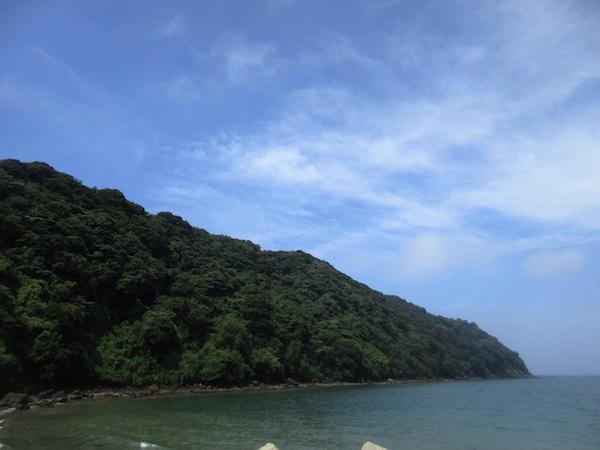 冨浦漁港から見る大房岬