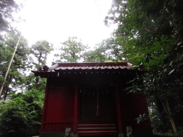 荒島の荒嶋神社