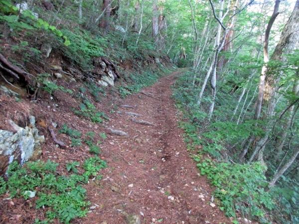 トドヶ崎への道。4キロほど山道を歩く