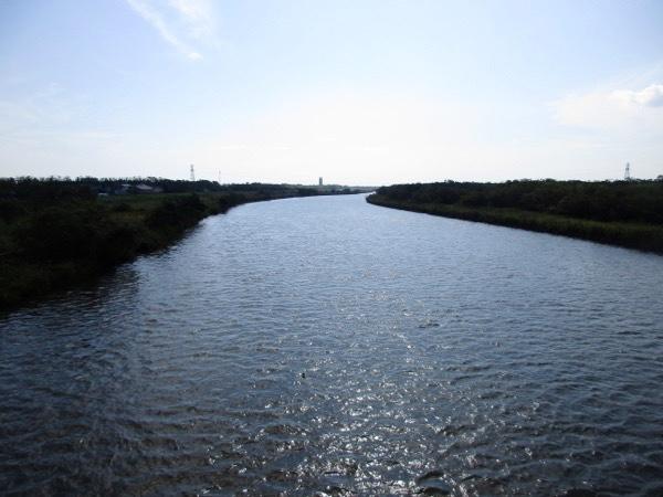 標津川の流れ。サケののぼる川