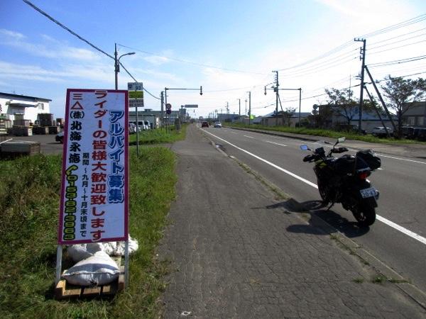 標津の国道沿いには「サケバイ」(サケのバイト)の看板が立っている