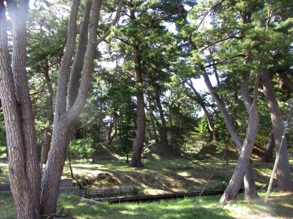 海岸の松林には平舘台場跡が残っている