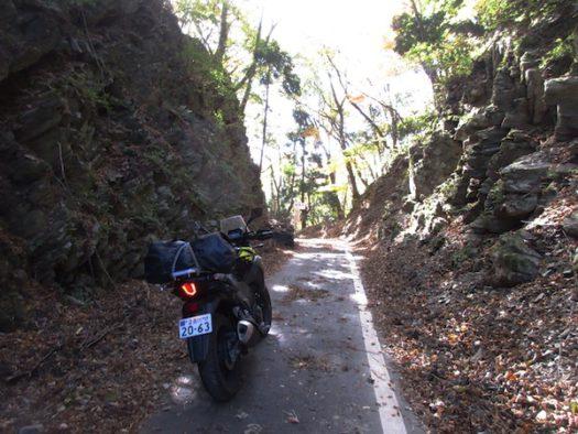 県道250号の峠