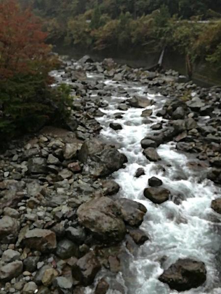 四万十川源流の流れ