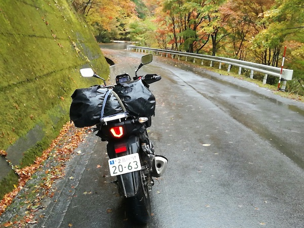 四万十川源流の紅葉の道を走る